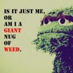 Adults-Only Muppet Joke