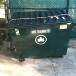 Baby Disposal Forbidden In Brooklyn Dumpsters