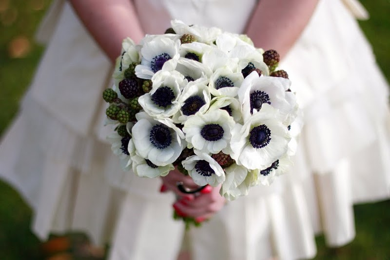 The pinterest guide to wedding flowers you love but cant id the pinterest guide to wedding flowers you love but cant id because youre not a botanist mightylinksfo