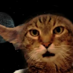 VIDEO: Cat Sings Star Wars Theme