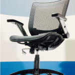 The Throne of Office Swivel Chairs